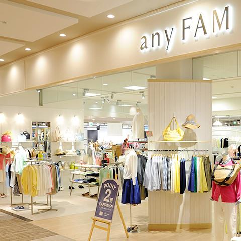 anyFAM&SiSイメージ