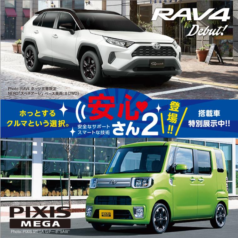 ネッツトヨタ京華 人気のクルマを集めた車両展示イベント!